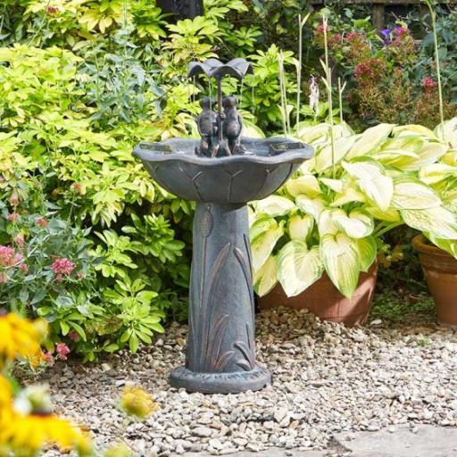 Solar Frog Frolics Fountain